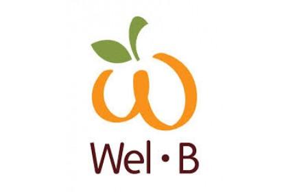 Wel B Freeze Dried Strawberries (Expiry Date: 04/11/2021)